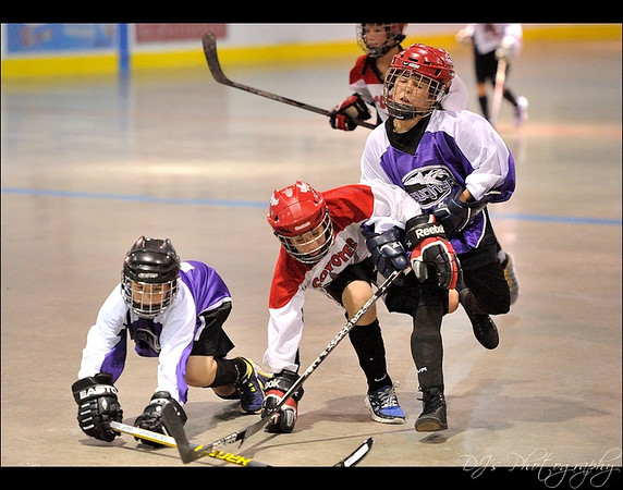 Ball Hockey Provincials July 13-15 2012